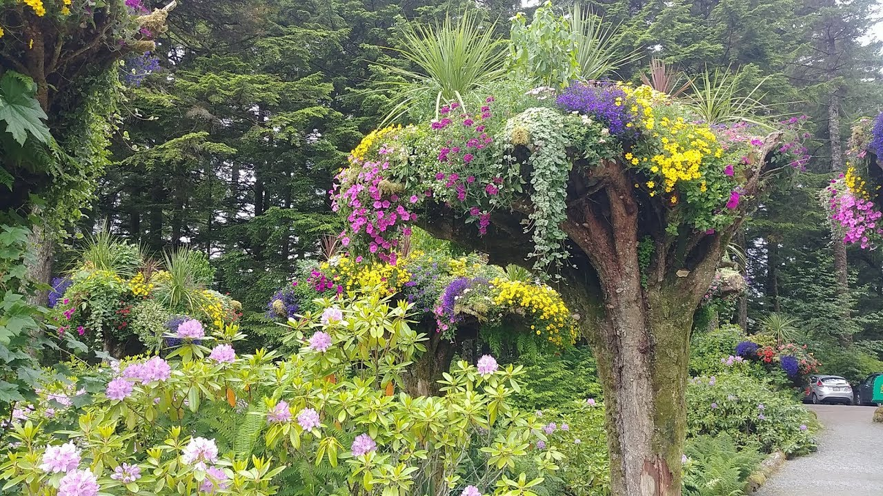 Things To Do In Juneau Glacier Gardens Rainforest Excursion