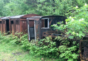 things-to-do-in-juneau-gold-creek-alaska-unplugged